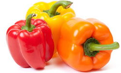 Fresh Wholesale Bell Peppers